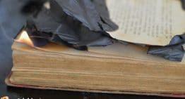 The Curious Quran-Burning Plan