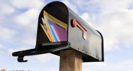 What's in Your Mailbox?