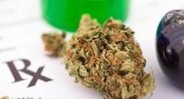 Legal Limits Drive Fight Over Medical Marijuana