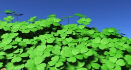 Is St. Patrick More Important to America Than Ireland?