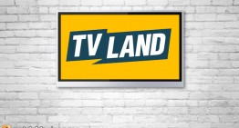 TV Land Shifts Focus to the Next Generation