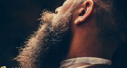 Furry Christmas? Is the World Ready for Beard Lights?